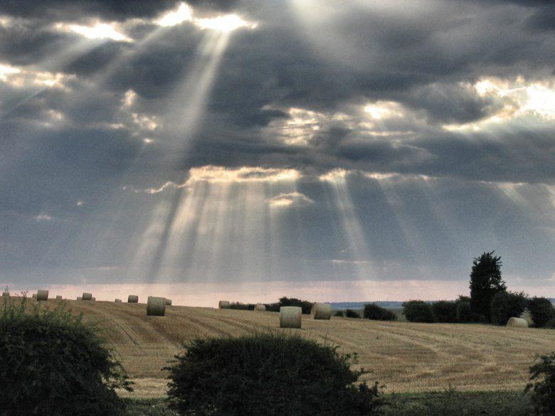 悟りから遠い東大生が八日間だけ歩き遍路に行ったら、雲の切れ間から光がやっと、やっと差し込み始めた話