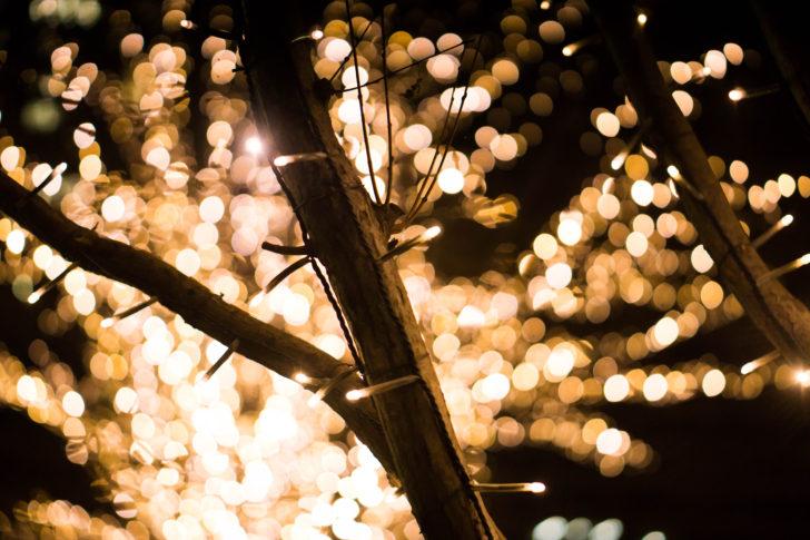 【UmeeTクリスマス企画】人は一夜でどれだけのイルミネーションスポットを回れるのか