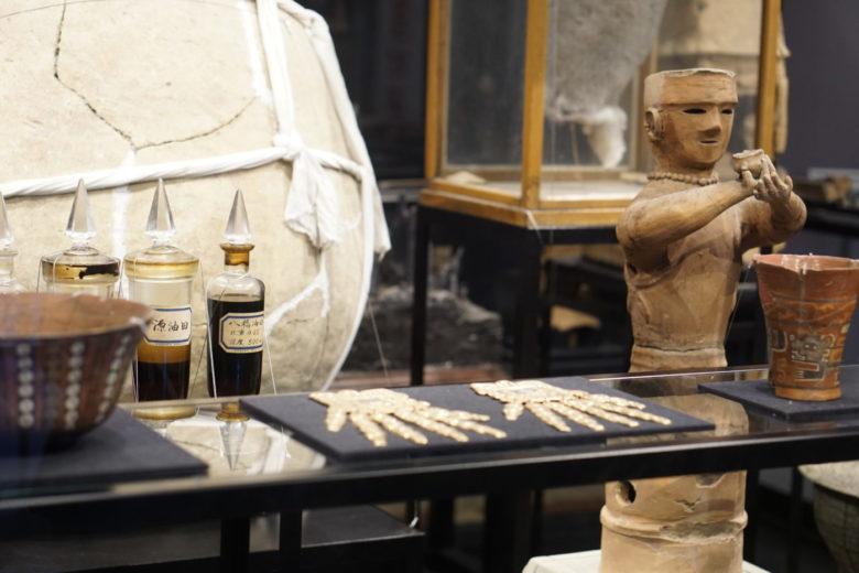 【日本の大学最古の学術標本を展示している!?】東大博物館の謎に迫る!!